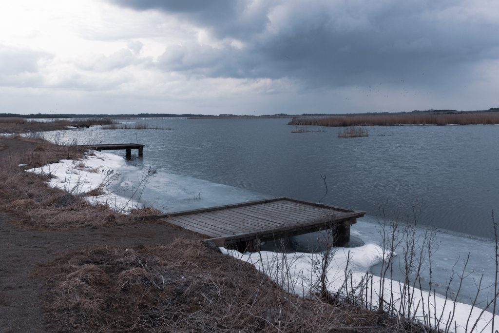 Vilsted Sø im März 2013